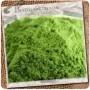wheatgrass_02